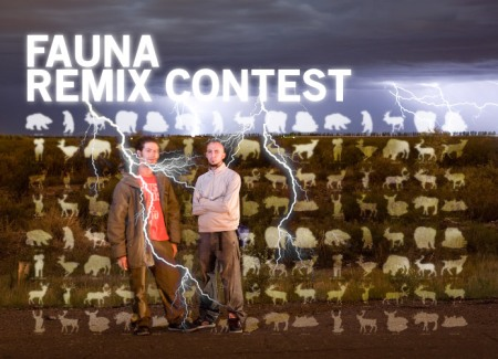 fauna-remixcontest